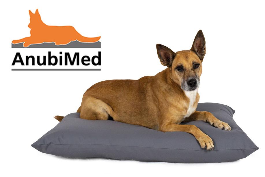 AnubiMed Hundebetten – Für Den Schutz Ihres Hundes